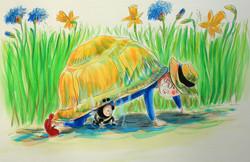Jardin abeille et tortue