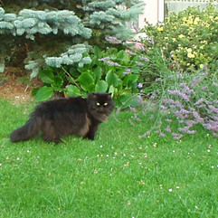 Gartenparty_01.08.2002  (38).JPG