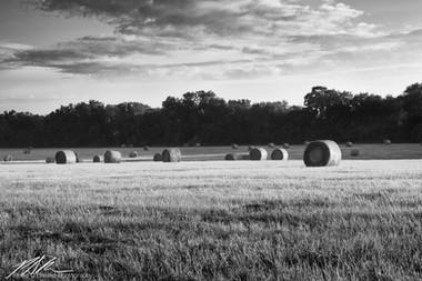 Hay bales at sunrise, Summerfield