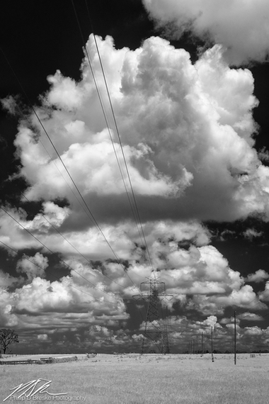 High-tension power lines near Belleview, August 2017