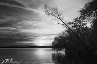 Sunrise and trees on Lake Bemidji, Minnesota, June 2018