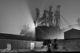 Seminole Feed mill in fog, Ocala