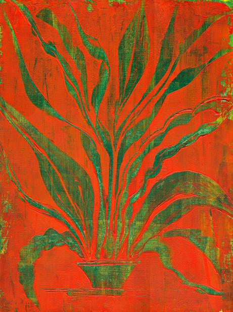 Plant Study 0001sm.jpg
