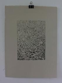 Beverley Thornley:  Coral rubble+.jpg