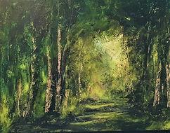 forest, wood, jungle, rainforst, amazon