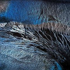 adele gibson - frost bird.jpg