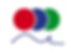 FRSI Logo.png