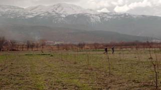 CANNES: papermoon films koproduziert türkischen Kinderfilm zusammen mit Cine Chromatix