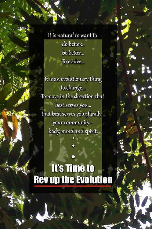 10 Cards - REvolution
