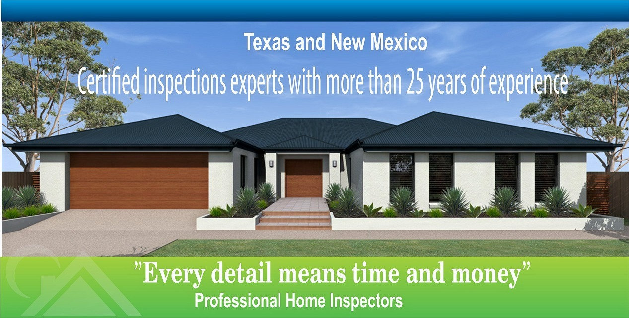 Professional HOME & TERMITE INSPECTION