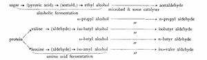 Виски|альдегидность|Неаронов Алексей|азбука винокура