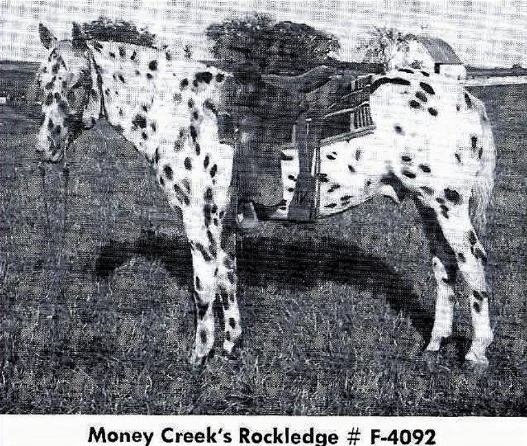 moneycreeksrockledge.jpg