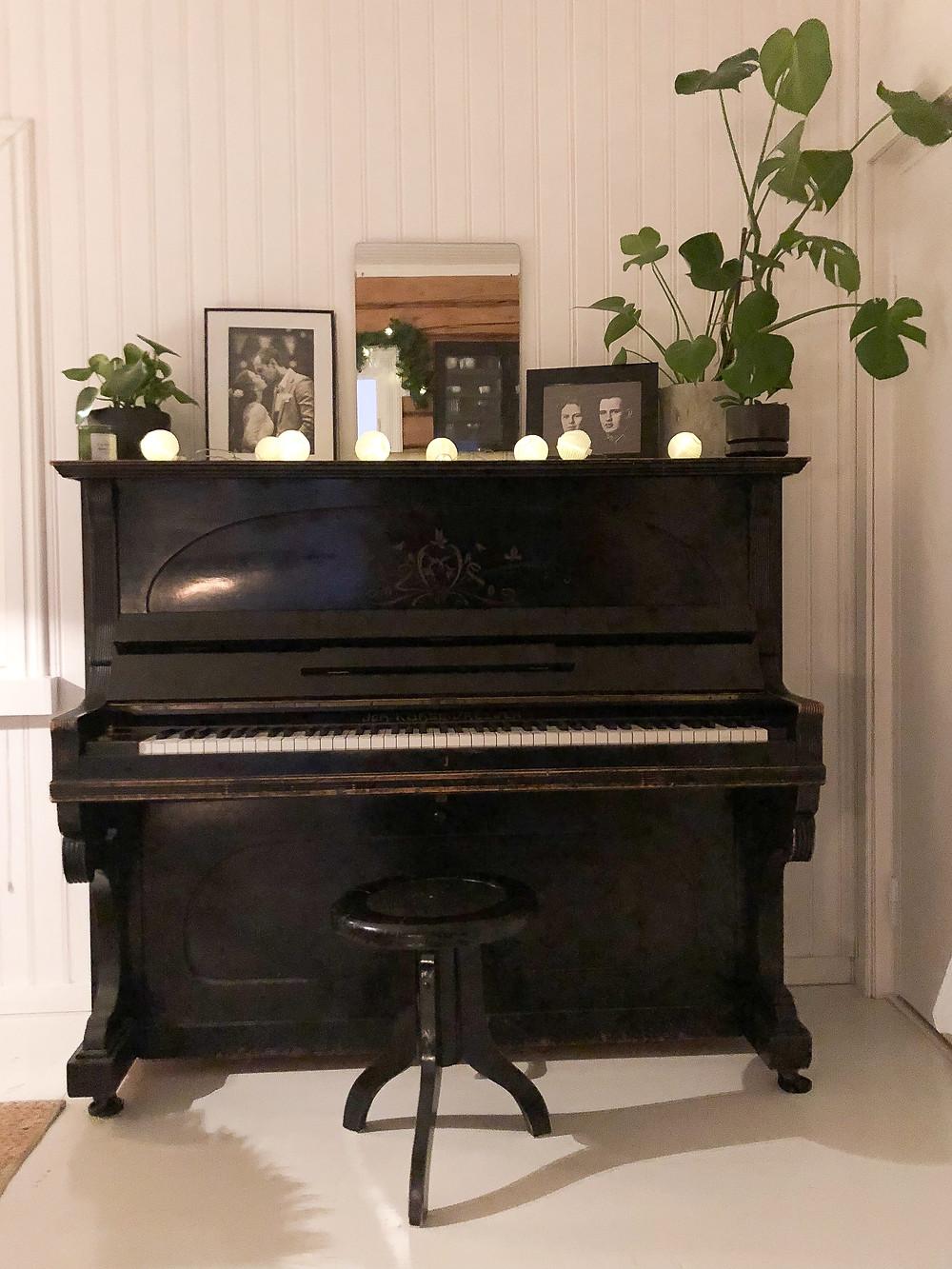 piano decor with plants, pianon sisustus ja koristelu kasveilla