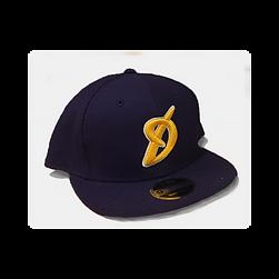 Disciples Snapback Hat