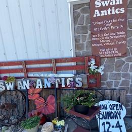 Swan Antics.png
