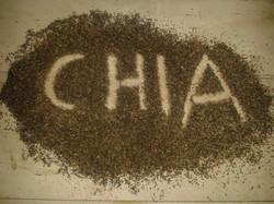 Chia Schrift