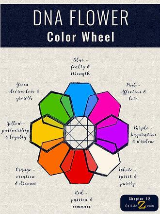 DNA_FLOWER_colorwheel.jpg