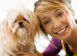 Cães ajudam no tratamento da depressão e ansiedade