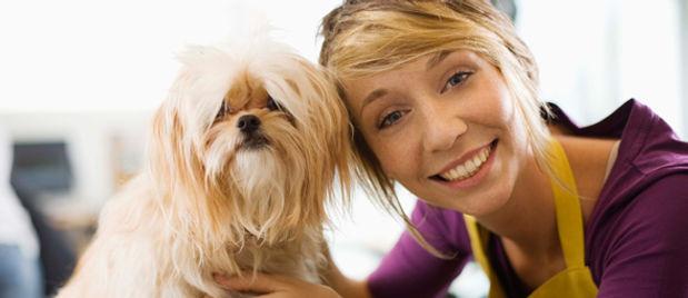 Not 2 Shaggy Housecall Dog Grooming Bluffton SC/ Hilton Head SC