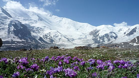 Pamir.Mountains.original.32101-001.jpg