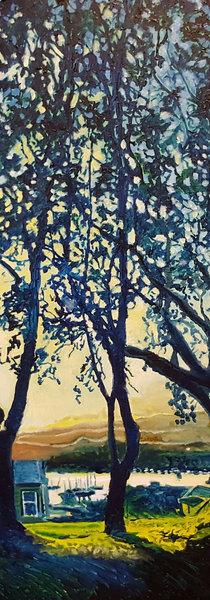 KIlbirnie Through the Trees