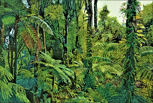 Fernery, Otari-Wilton Bush