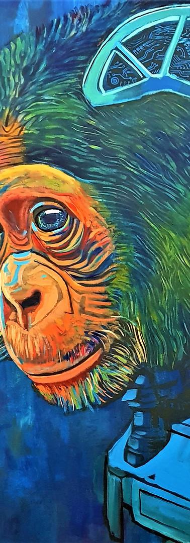 Robo-Bonobo