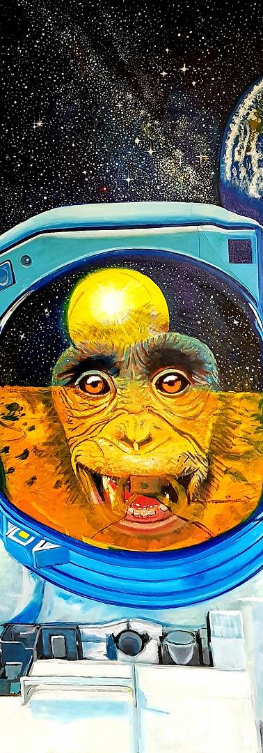 Astro-Bonobo