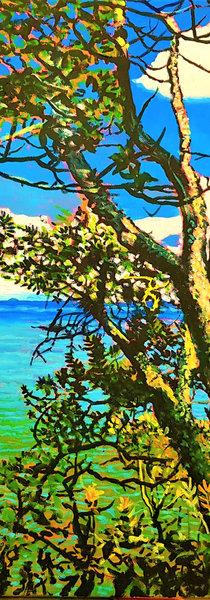 Waihi Trees