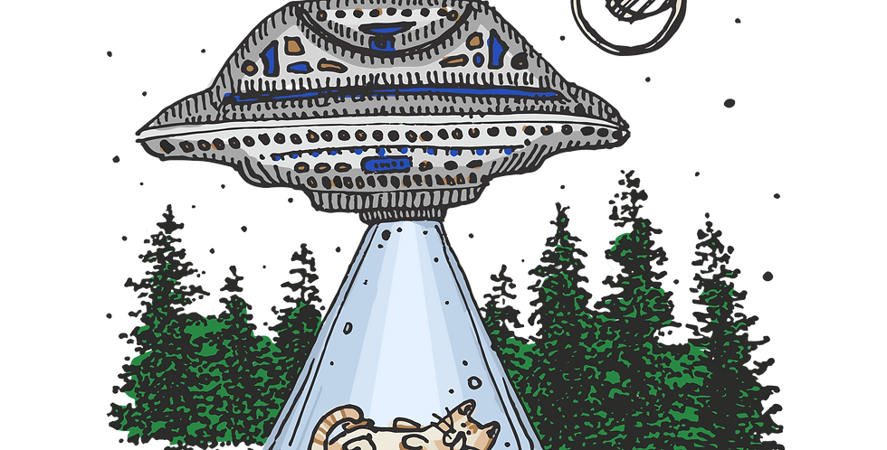 UFO Cat Sticker