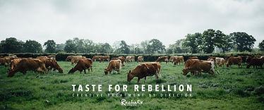 Rachels-Taste-for-Rebellion.jpg