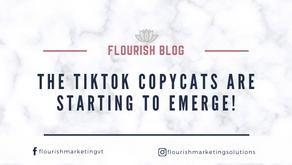 The TikTok Copycats are starting to Emerge!