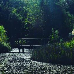 Lakes at Reforge