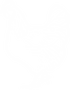 THL_Chook_Icon_White.png
