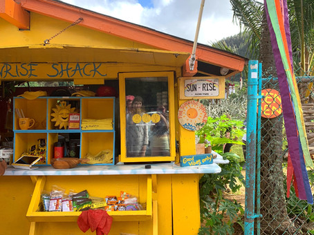Sunrise Shack: Does the Instagram Famous Smoothie Shop Live Up to the Hype?