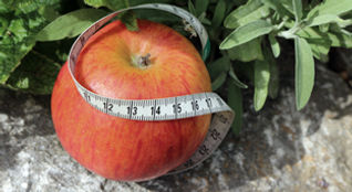 Gesund und nachhaltig abnehmen mit Metabloc Balance