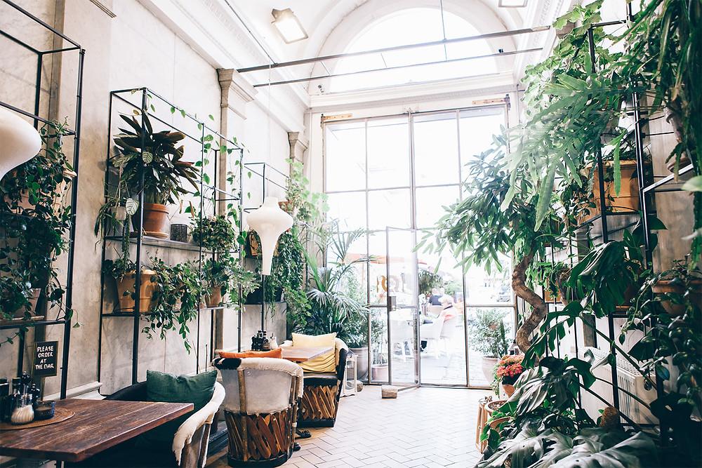 The leafy entrance at Babette Guldsmeden Hotel in Copenhagen