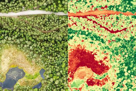 Luftbild Drohne Landwirtschaft Ernte Agrar Bauer Vegetation