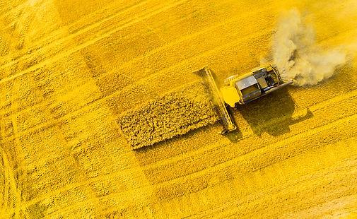 Luftbild Drohne Video Agrarwirtschaft landwirtschaft Rehkitzrettung Bad Dürkheim