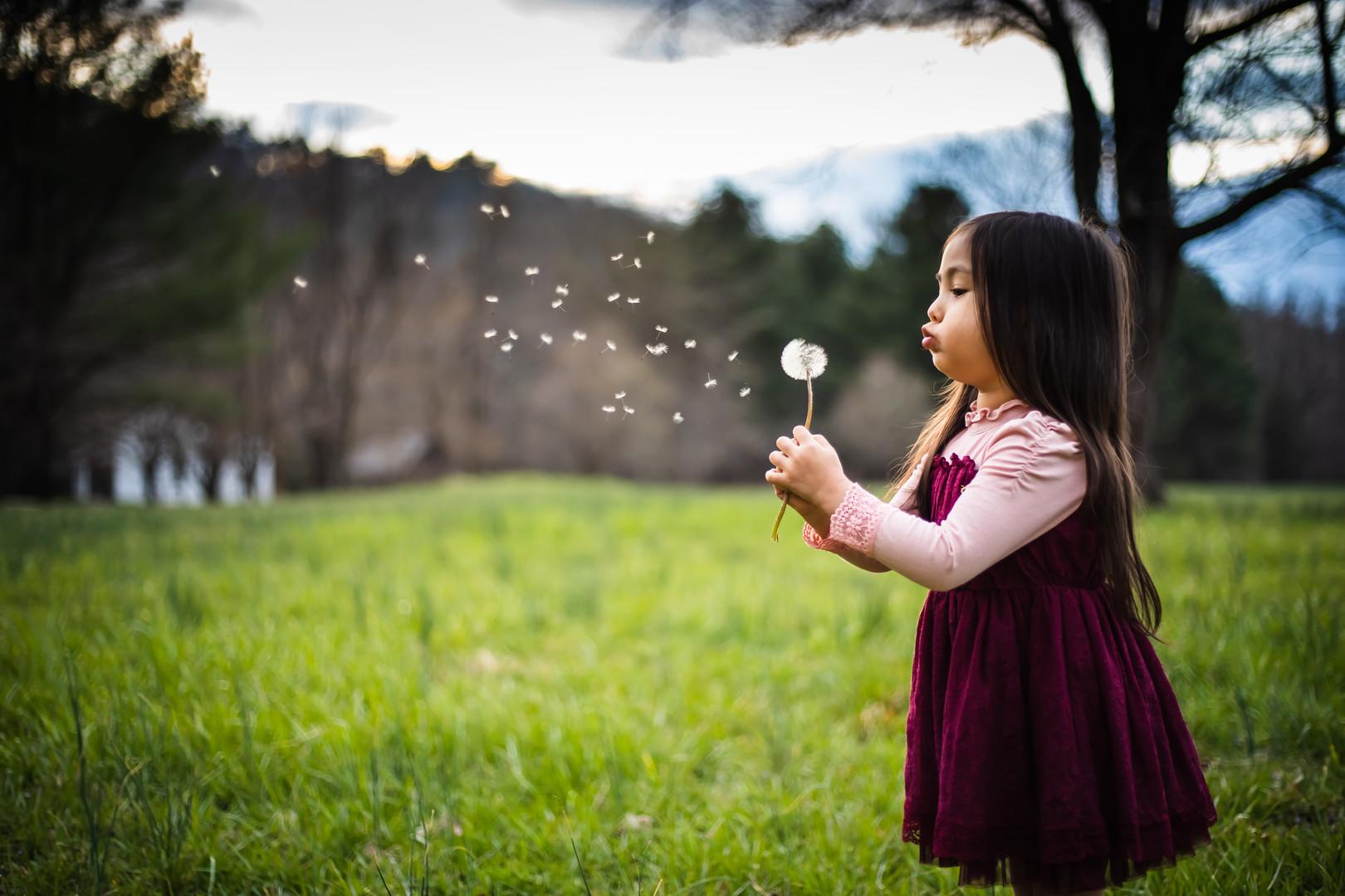 little-girl-dandelion-GreatSmokyMountain