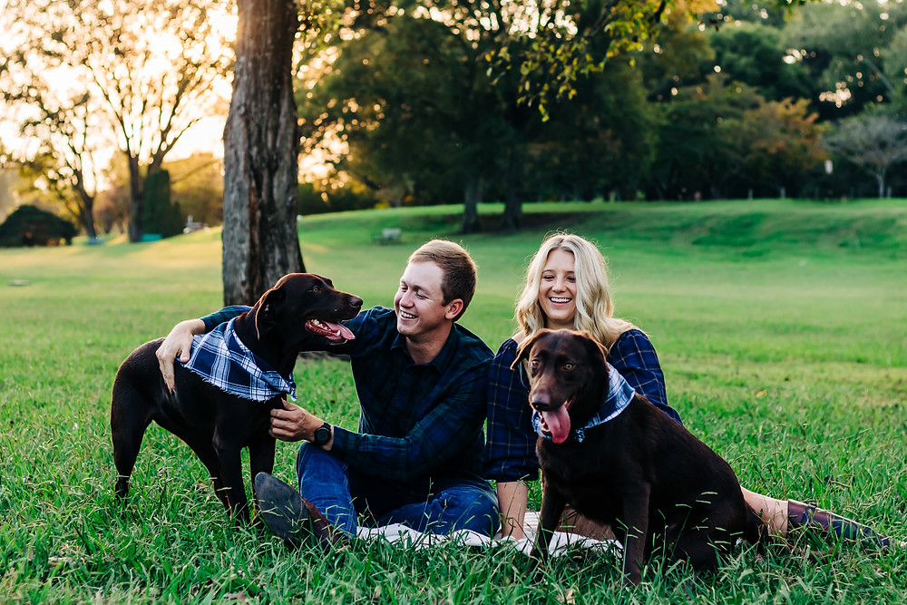 A couple and their two dogs are playing in the green field area at Sequoyah hills park in knoxville tennessee for their photography session with sweetest moments photography