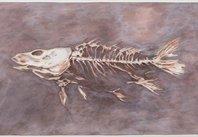Corinne Chaix, Big Fish Skeleton, Acryli