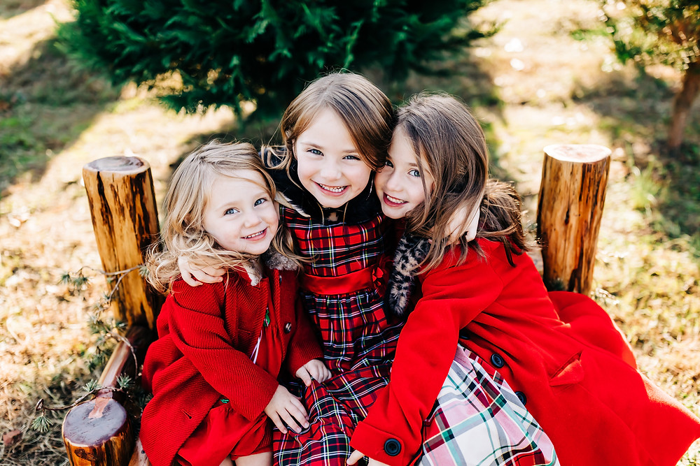 Three sisters snuggling together smiling for their photography session with knoxville family photographer sweetest moments photography for their christmas tree farm mini session at bluebird christmas tree farm