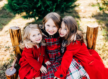Christmas Tree Farm Minis at Bluebird Christmas Tree Farm
