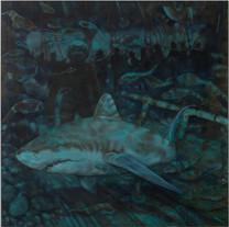 Corinne Chaix, Of Shark and Men, Acrylic