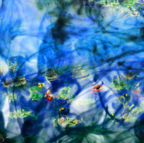 s_권현진, Monet's Water Lilies and since th