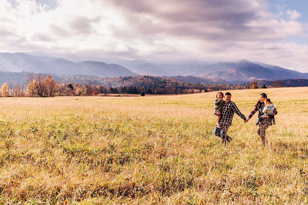 family of four walking in a grassy field in the great smoky mountain national park at their lifestyle photography session with sweetest moments photography