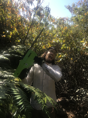 Dome in food forest with Chainsaw