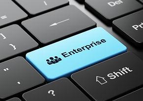 Business Enterprise Button.jpg