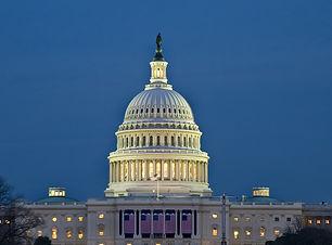 US Capital Building Dome.jpg